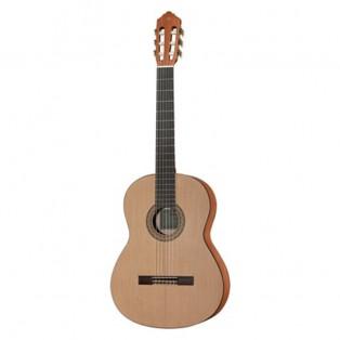 قیمت خرید فروش گیتار کلاسیک Yamaha C40M