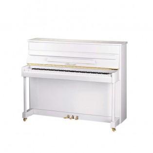 قیمت خرید فروش پیانو آکوستیک ریتمولر Ritmuller UP118R2 A112