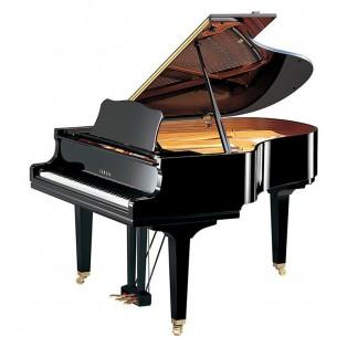 قیمت خرید فروش پیانو گرند یاماها Yamaha C1 PE